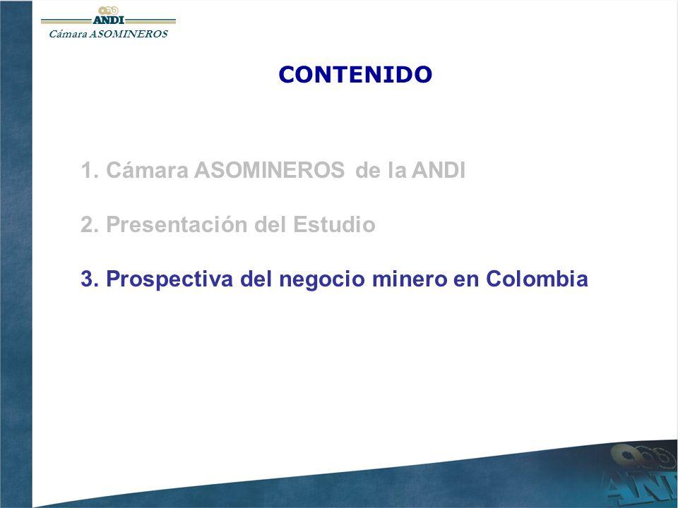 Cámara de ASOMINEROS PRINCIPALES PRODUCTORES MINEROS EN COLOMBIA EN EL 2007 Cerrejón Cerromatoso Drummond Glencore Mineros Carbón: 70 Mtons.