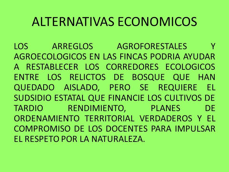 ALTERNATIVAS ECONOMICOS LOS ARREGLOS AGROFORESTALES Y AGROECOLOGICOS EN LAS FINCAS PODRIA AYUDAR A RESTABLECER LOS CORREDORES ECOLOGICOS ENTRE LOS REL