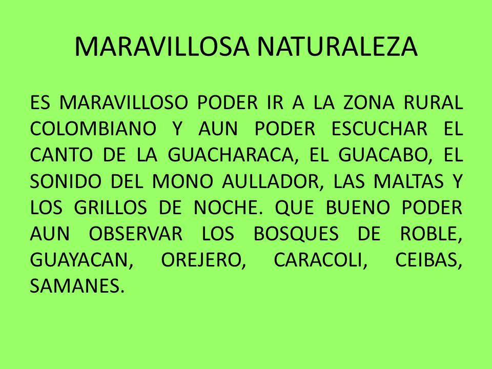MARAVILLOSA NATURALEZA ES MARAVILLOSO PODER IR A LA ZONA RURAL COLOMBIANO Y AUN PODER ESCUCHAR EL CANTO DE LA GUACHARACA, EL GUACABO, EL SONIDO DEL MO