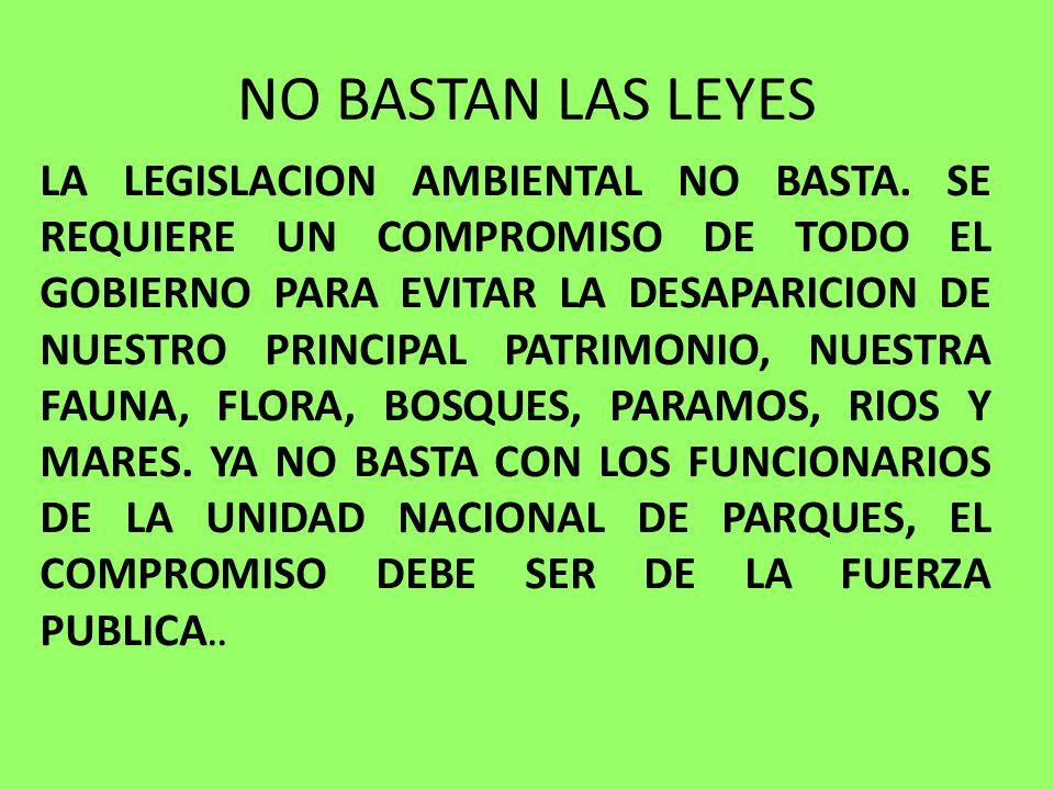 NO BASTAN LAS LEYES LA LEGISLACION AMBIENTAL NO BASTA. SE REQUIERE UN COMPROMISO DE TODO EL GOBIERNO PARA EVITAR LA DESAPARICION DE NUESTRO PRINCIPAL
