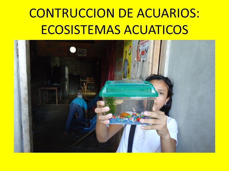 CONTRUCCION DE ACUARIOS: ECOSISTEMAS ACUATICOS