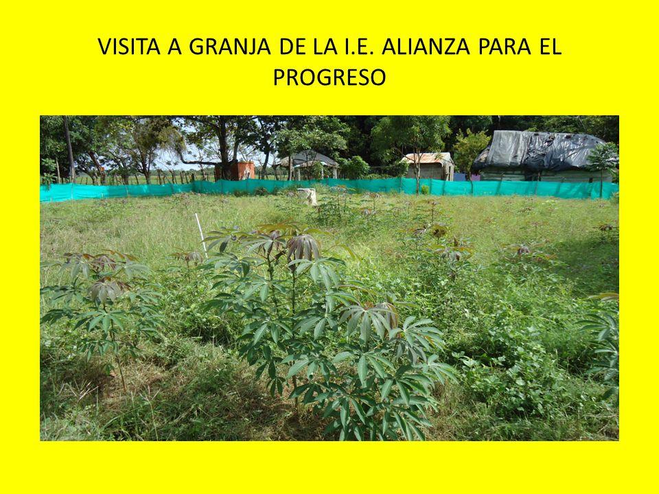 VISITA A GRANJA DE LA I.E. ALIANZA PARA EL PROGRESO