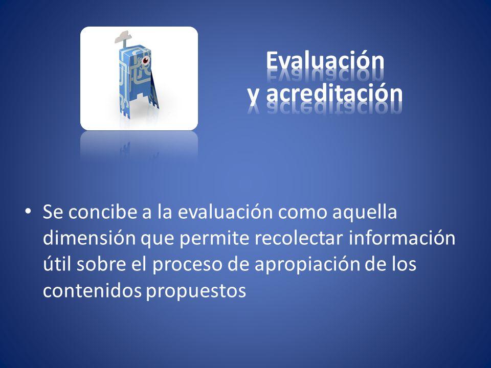 Se concibe a la evaluación como aquella dimensión que permite recolectar información útil sobre el proceso de apropiación de los contenidos propuestos