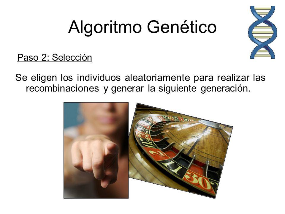 Algoritmo Genético Paso 2: Selección Se eligen los individuos aleatoriamente para realizar las recombinaciones y generar la siguiente generación.