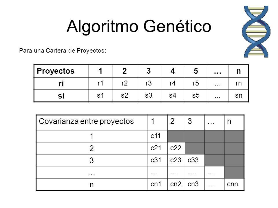 Algoritmo Genético Proyectos12345…n ri r1r2r3r4r5…rn si s1s2s3s4s5...sn Covarianza entre proyectos123…n 1 c11 2 c21c22 3 c31c23c33 … ……….… n cn1cn2cn3