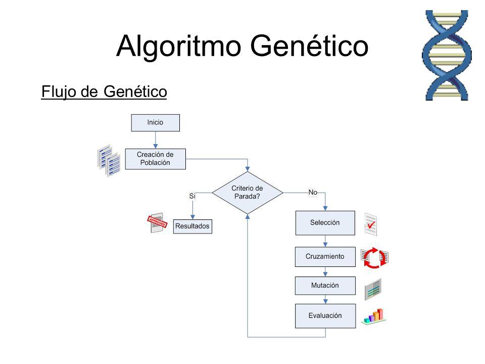 Algoritmo Genético Población inicial = Población inicial de POSIBLES SOLUCIONES Cromosoma1Cromosoma2 Cromosoma3Cromosoma4 Cromosoma5 Cromosoma..