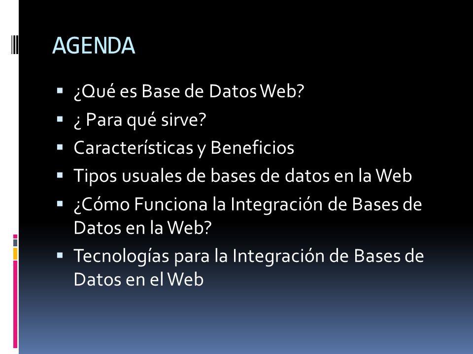 AGENDA ¿Qué es Base de Datos Web? ¿ Para qué sirve? Características y Beneficios Tipos usuales de bases de datos en la Web ¿Cómo Funciona la Integraci