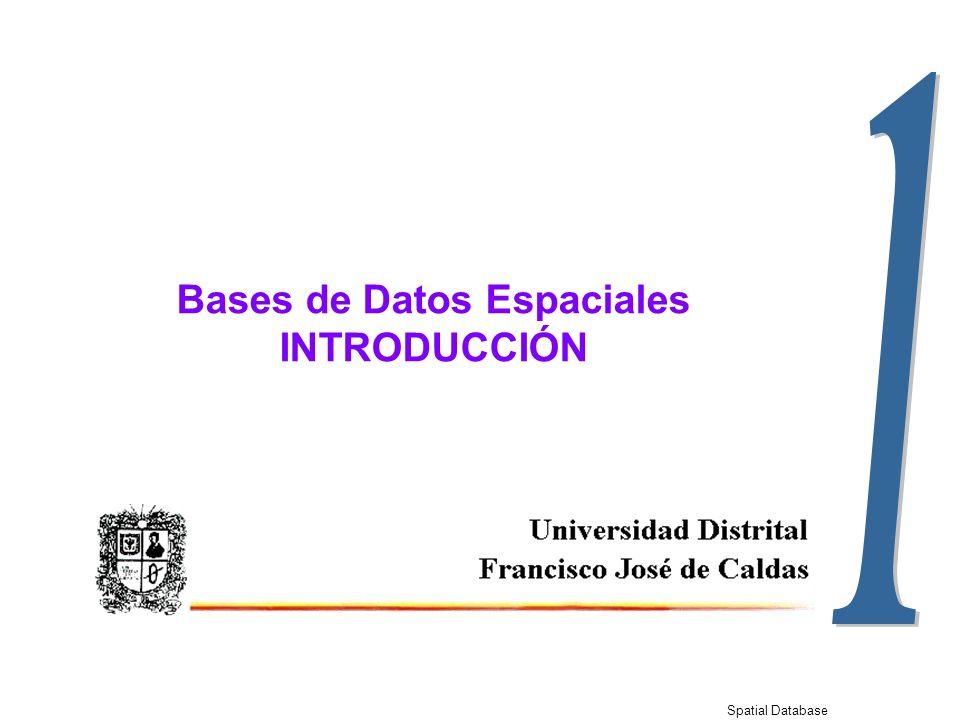 Spatial Database 1-21 Ejercicio de Evolución de las BDE Elabore un diagrama de clases para implementar las siguientes estructuras geográficas: Punto LíneaÁrea Simple Línea Imágenes