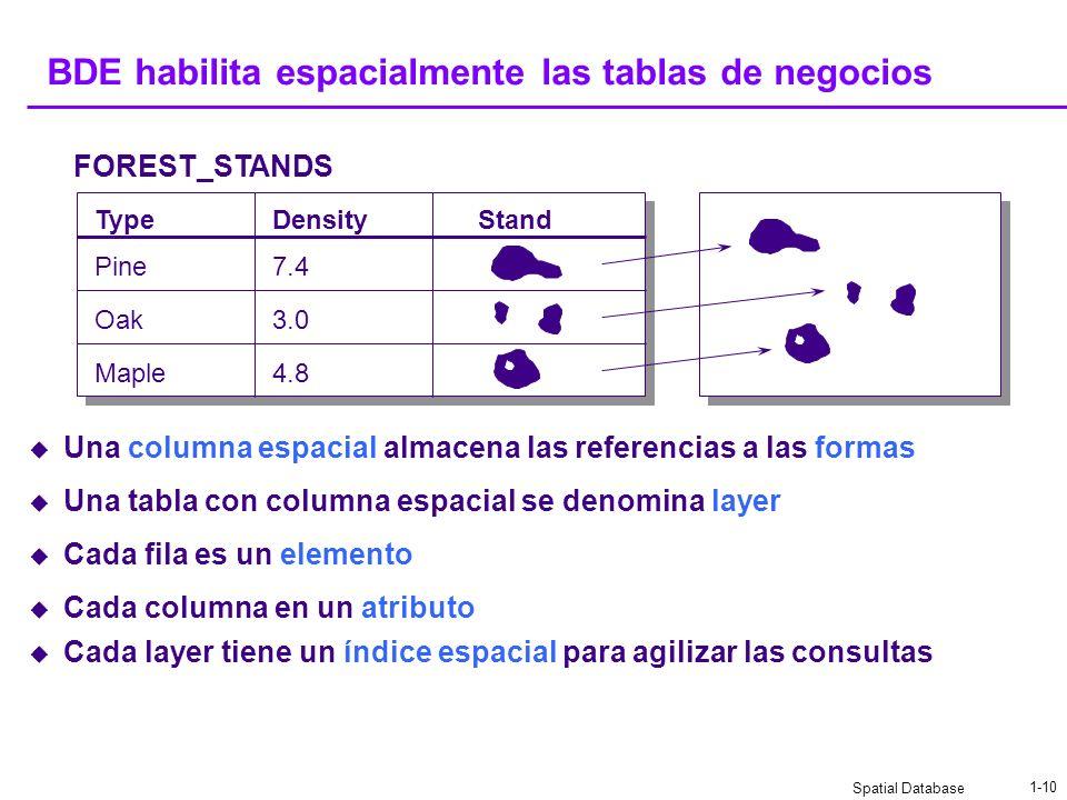 Spatial Database 1-9 La tabla de negocios Es una tabla nueva o existente en el RDBMS Contiene columnas definidas por el usuario Solamente se refiere a