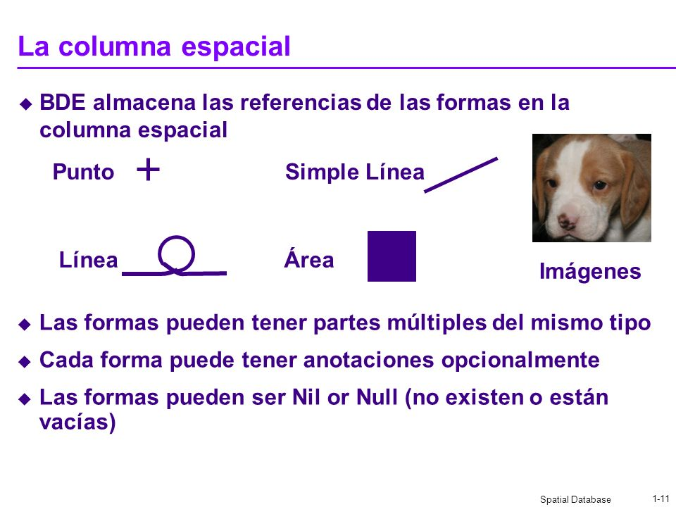Spatial Database 1-10 BDE habilita espacialmente las tablas de negocios Una columna espacial almacena las referencias a las formas Una tabla con colum
