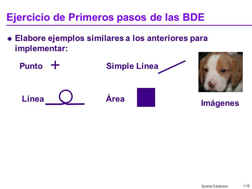 Spatial Database 1-17 Primeros pasos de las BDE Los tipos de datos espaciales no eran soportados IDNombreGeometría 1NQSLine((1,1),(2,3),(4,3.6)) 2Circ