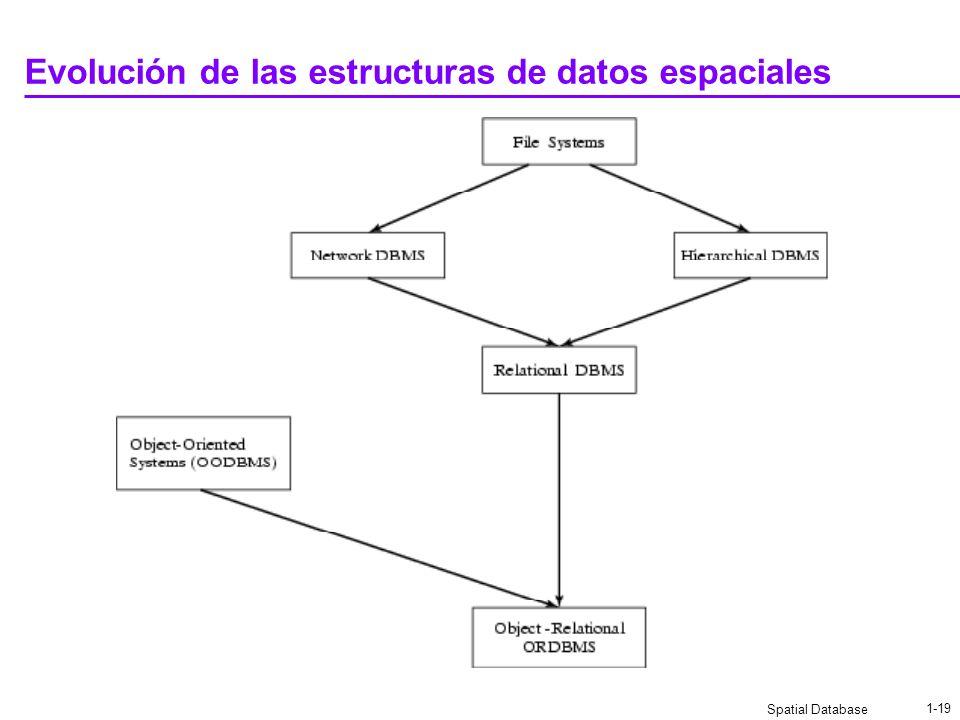 Spatial Database 1-18 Ejercicio de Primeros pasos de las BDE Elabore ejemplos similares a los anteriores para implementar: Punto LíneaÁrea Simple Líne