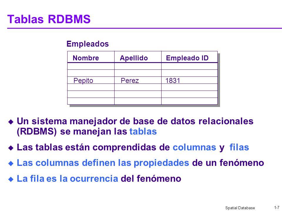 Spatial Database 1-7 Tablas RDBMS Un sistema manejador de base de datos relacionales (RDBMS) se manejan las tablas Las tablas están comprendidas de columnas y filas Las columnas definen las propiedades de un fenómeno La fila es la ocurrencia del fenómeno Empleados NombreEmpleado IDApellido PepitoPerez1831