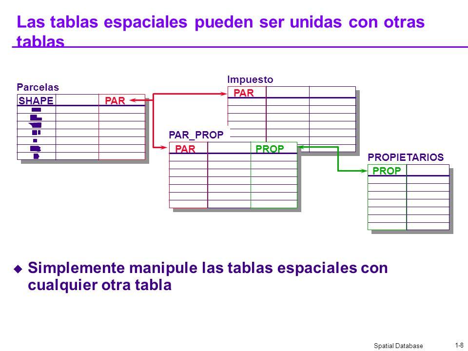 Spatial Database 1-8 Las tablas espaciales pueden ser unidas con otras tablas Simplemente manipule las tablas espaciales con cualquier otra tabla Impuesto PAR PAR_PROP Parcelas PROPIETARIOS PROP PAR SHAPE