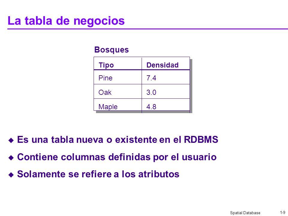 Spatial Database 1-9 La tabla de negocios Es una tabla nueva o existente en el RDBMS Contiene columnas definidas por el usuario Solamente se refiere a los atributos Bosques TipoDensidad Pine Oak Maple 7.4 3.0 4.8