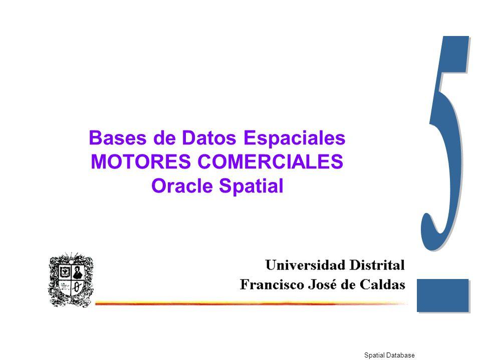 Spatial Database Bases de Datos Espaciales MOTORES COMERCIALES Oracle Spatial