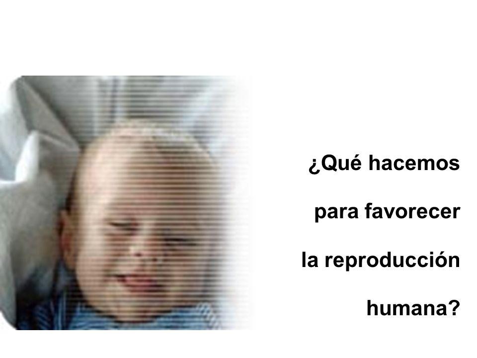 ¿Qué hacemos para favorecer la reproducción humana?