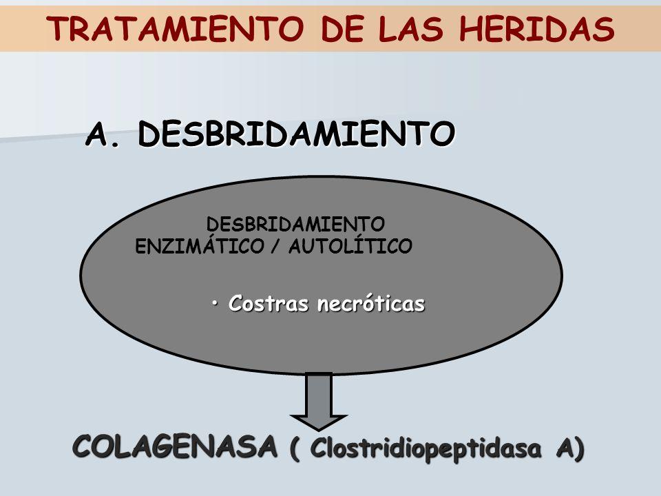 TRATAMIENTO DE LAS HERIDAS DESBRIDAMIENTO ENZIMÁTICO / AUTOLÍTICO A. DESBRIDAMIENTO Costras necróticas Costras necróticas COLAGENASA ( Clostridiopepti
