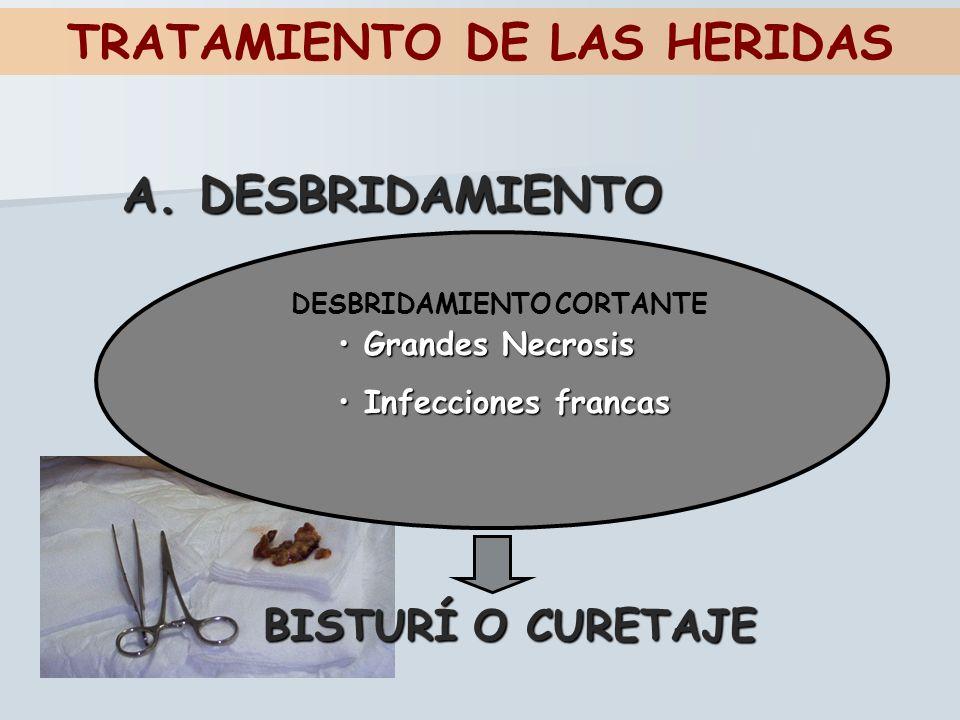 TRATAMIENTO DE LAS HERIDAS A. DESBRIDAMIENTO DESBRIDAMIENTO CORTANTE Grandes Necrosis Grandes Necrosis Infecciones francas Infecciones francas BISTURÍ