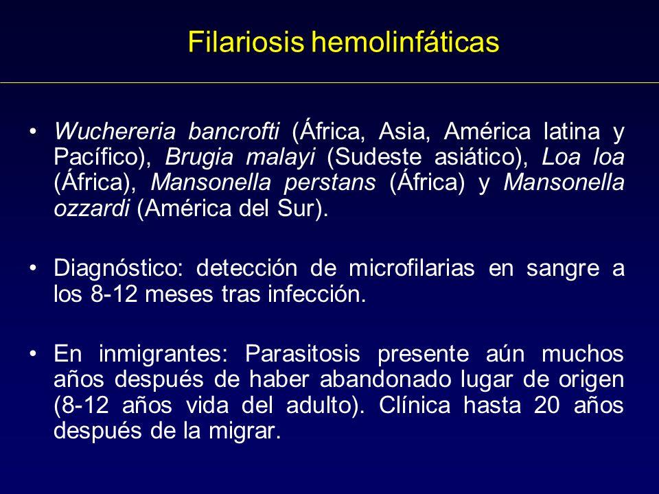 Filariosis hemolinfáticas Wuchereria bancrofti (África, Asia, América latina y Pacífico), Brugia malayi (Sudeste asiático), Loa loa (África), Mansonella perstans (África) y Mansonella ozzardi (América del Sur).