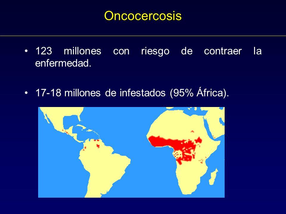 Oncocercosis 123 millones con riesgo de contraer la enfermedad.