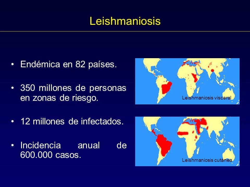 Leishmaniosis Endémica en 82 países. 350 millones de personas en zonas de riesgo. 12 millones de infectados. Incidencia anual de 600.000 casos. Leishm
