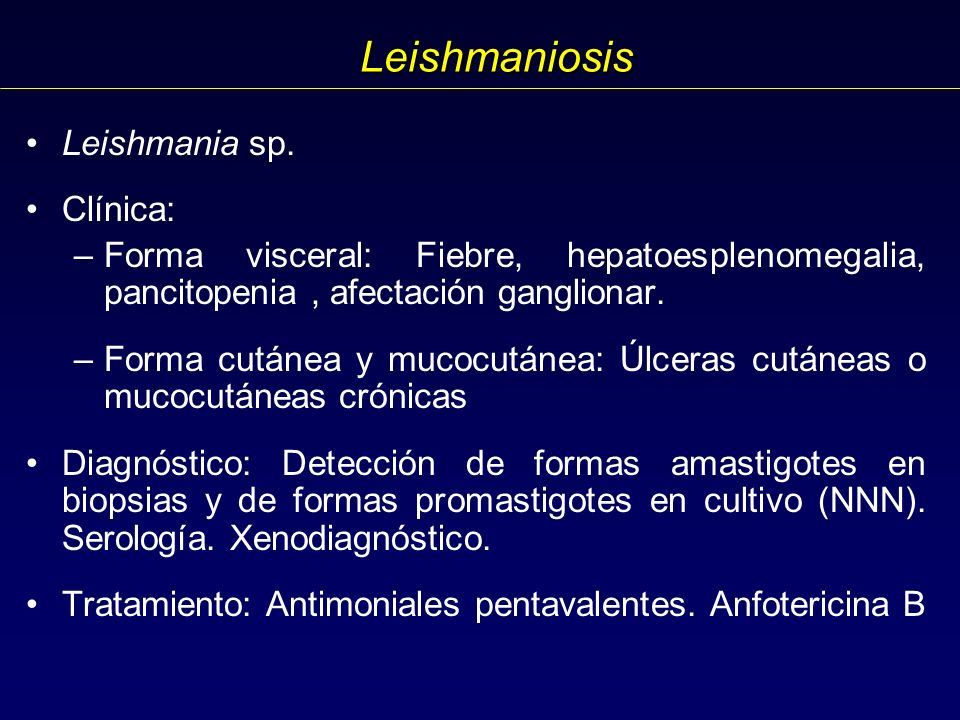 Leishmaniosis Leishmania sp.