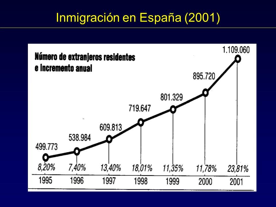 Inmigración en España (2001)