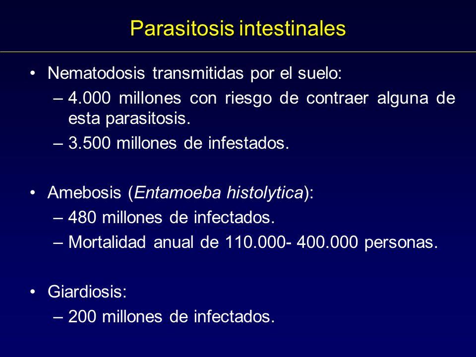 Parasitosis intestinales Nematodosis transmitidas por el suelo: –4.000 millones con riesgo de contraer alguna de esta parasitosis.