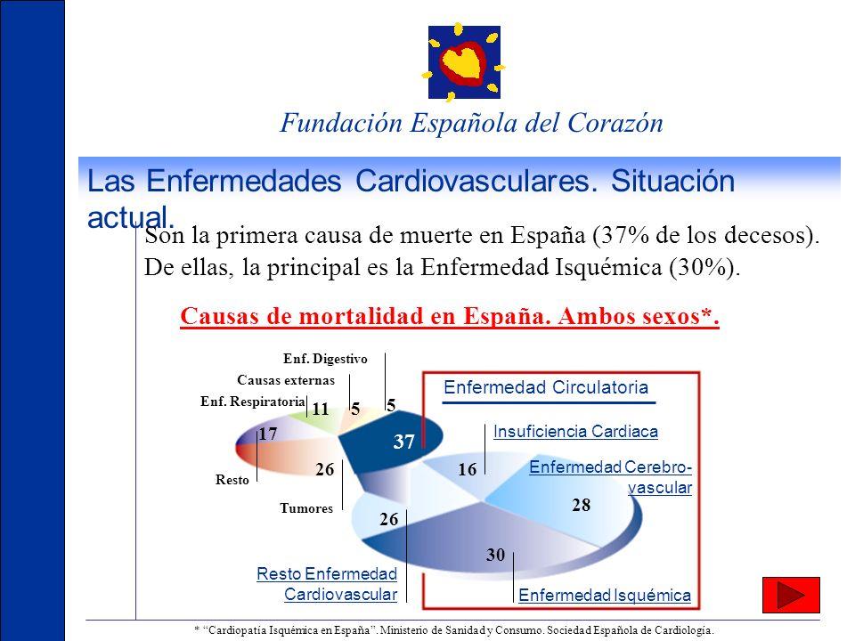 Fundación Española del Corazón Publicaciones de la FEC La revista está dirigida a la población general con 18.000 ejemplares de tirada y una distribución que incluye a los líderes de opinión, las autoridades políticas, sanitarias y empresariales, así como a cardiólogos, personal médico y sanitario, educadores, pacientes y sus familias y asociaciones.