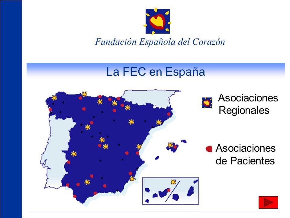Fundación Española del Corazón Organización de la FEC Asociaciones Regionales Asociación Española de Enfermería en Cardiología Asociaciones de Pacient