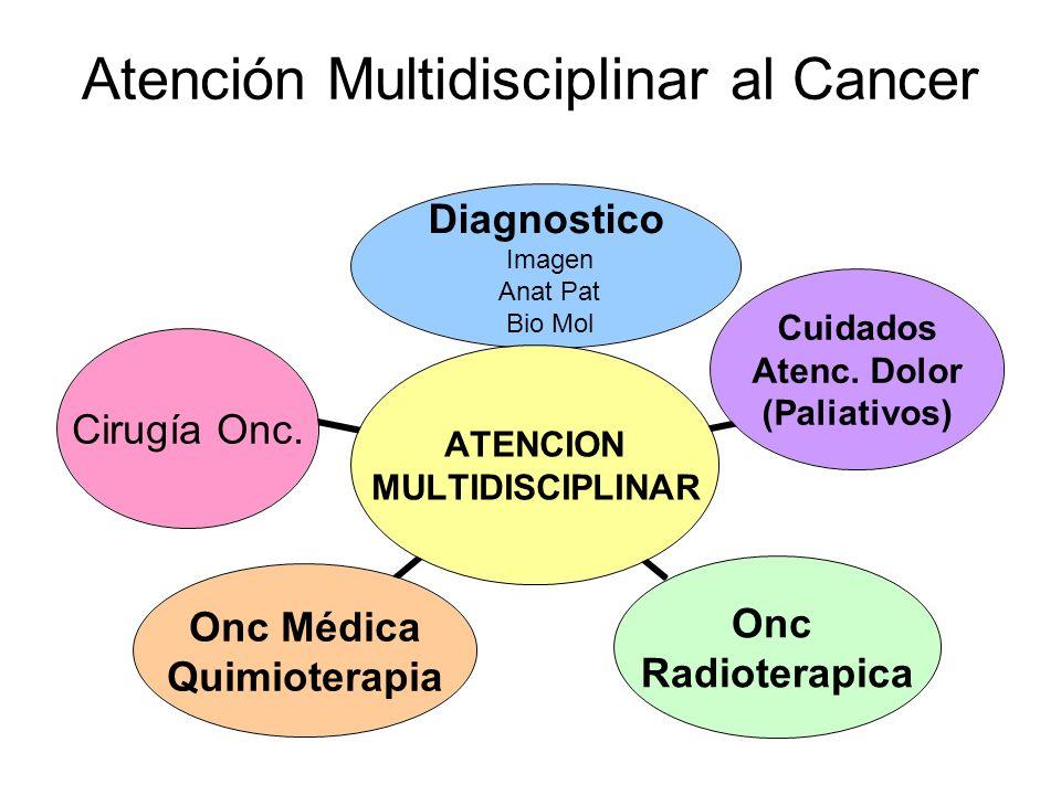 Atención Multidisciplinar al Cancer ATENCION MULTIDISCIPLINAR Diagnostico Imagen Anat Pat Bio Mol Cuidados Atenc. Dolor (Paliativos) Onc Radioterapica