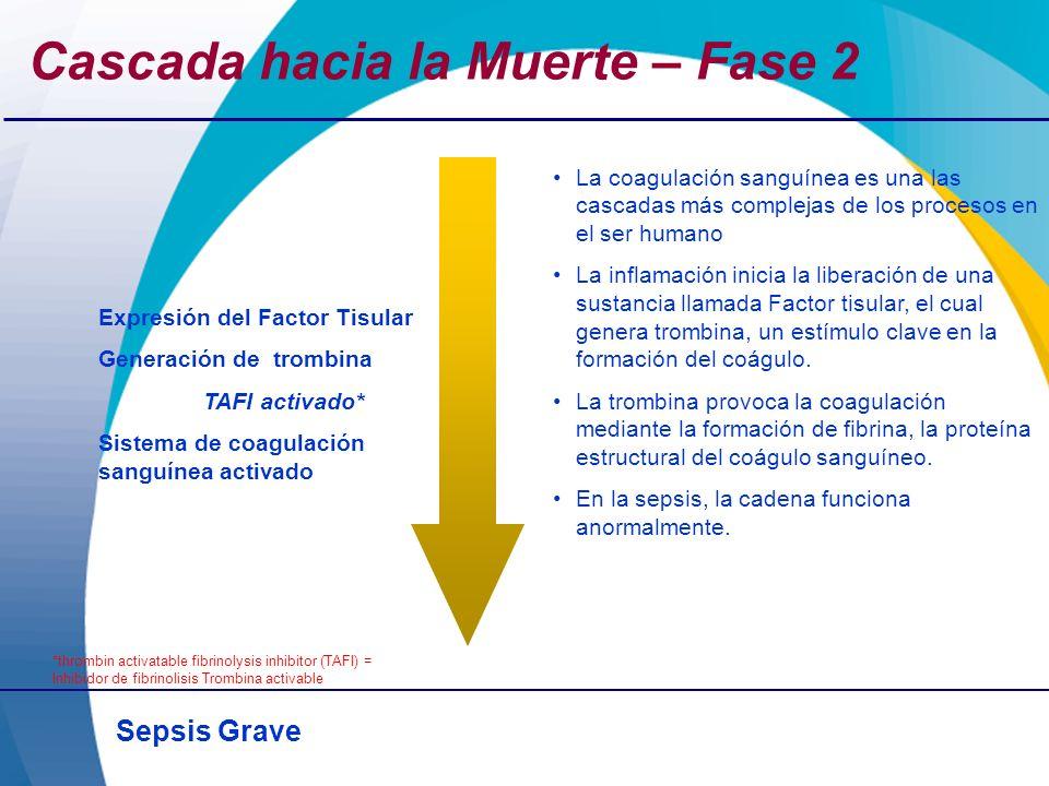 Sepsis Grave Expresión del Factor Tisular Generación de trombina TAFI activado* Sistema de coagulación sanguínea activado *thrombin activatable fibrin