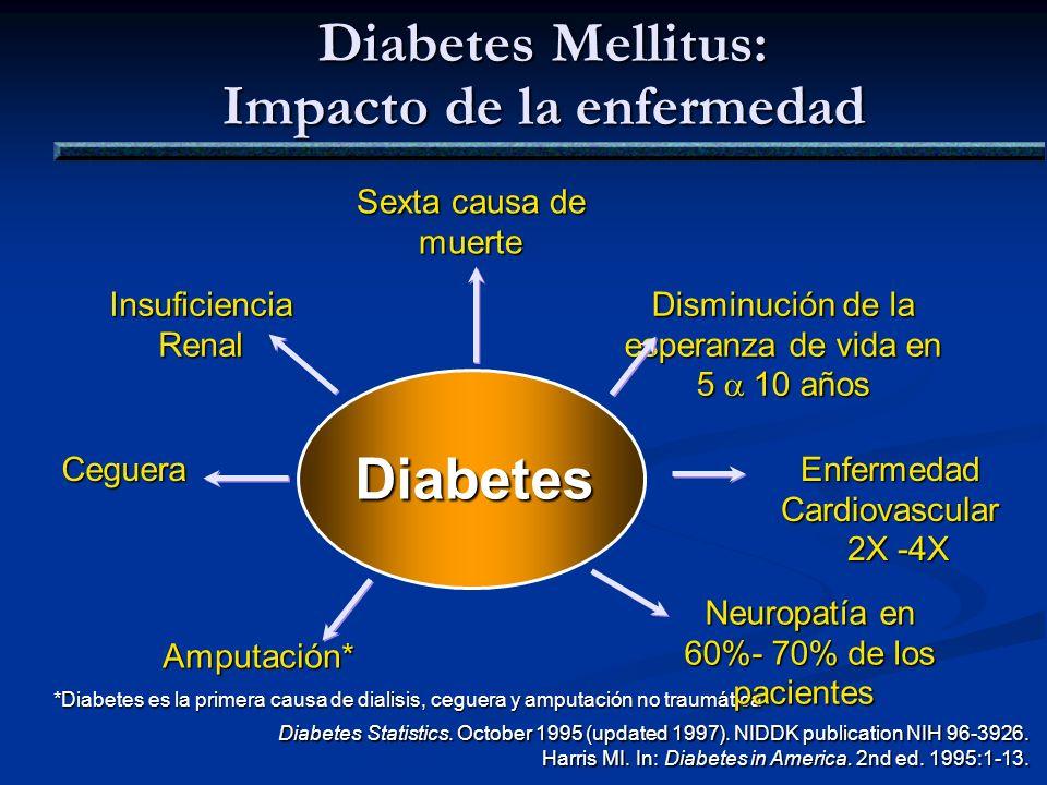 Diabetes Mellitus: Impacto de la enfermedad Diabetes Ceguera Insuficiencia Renal Insuficiencia Renal Amputación* Disminución de la esperanza de vida e