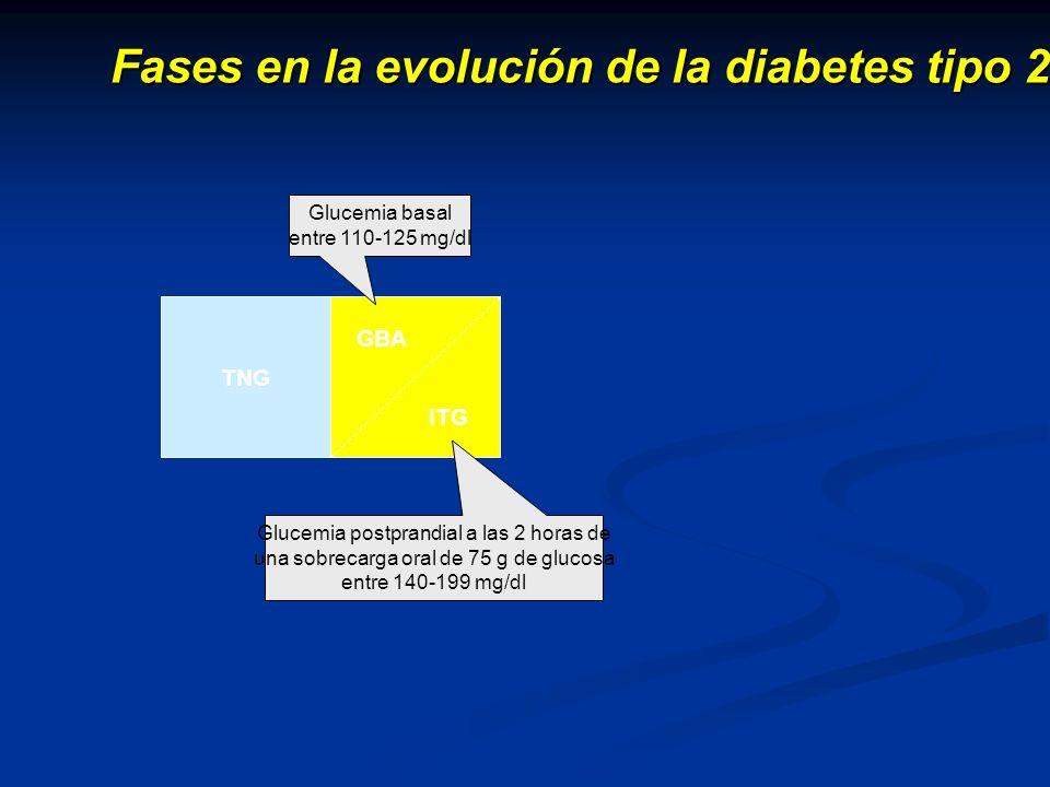 Fases en la evolución de la diabetes tipo 2 TNG GBA ITG Fase precoz D I A B E T E S Glucemia postprandial a las 2 horas de una sobrecarga oral de 75 g de glucosa entre 140-199 mg/dl Glucemia basal entre 110-125 mg/dl