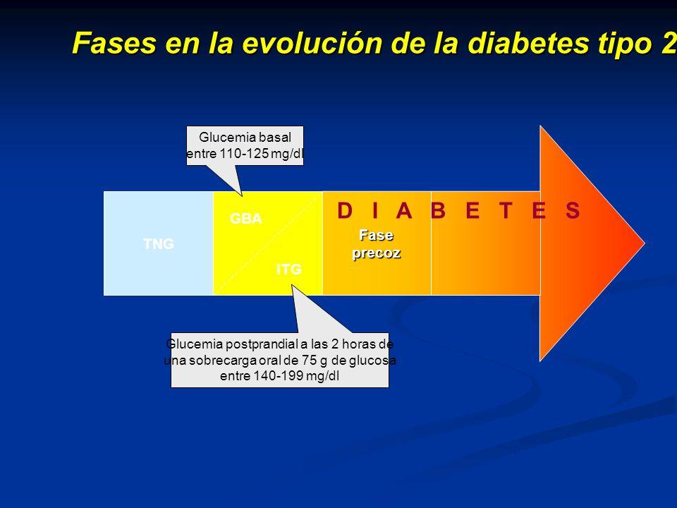 Fases en la evolución de la diabetes tipo 2 TNG GBA ITG Fase precoz D I A B E T E S MACROANGIOPATÍA COMPLICACIONES MICROANGIOPATÍA Glucemia postprandial a las 2 horas de una sobrecarga oral de 75 g de glucosa entre 140-199 mg/dl Glucemia basal entre 110-125 mg/dl
