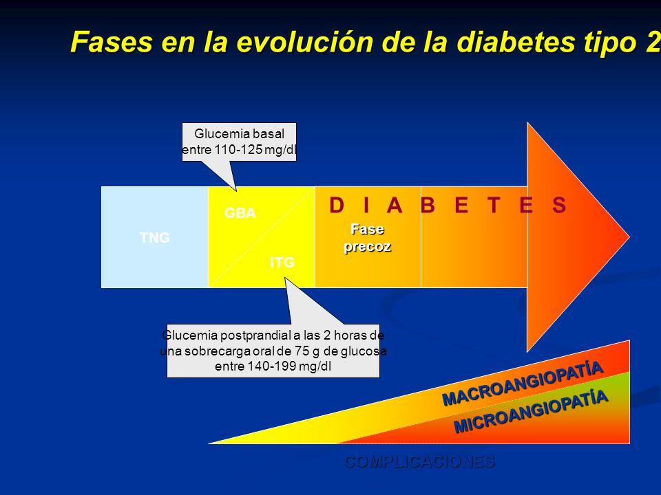 Fases en la evolución de la diabetes tipo 2 TNG GBA ITG Fase precoz D I A B E T E S MACROANGIOPATÍA COMPLICACIONES MICROANGIOPATÍA Glucemia postprandi