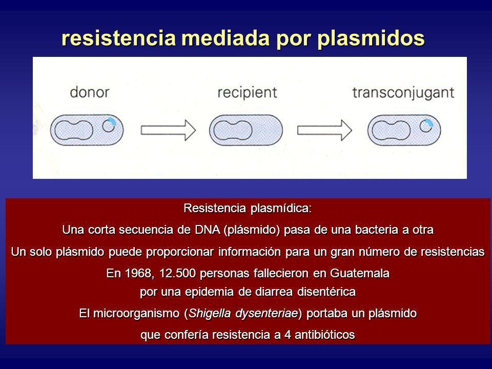 resistencia mediada por plasmidos Resistencia plasmídica: Una corta secuencia de DNA (plásmido) pasa de una bacteria a otra Un solo plásmido puede proporcionar información para un gran número de resistencias En 1968, 12.500 personas fallecieron en Guatemala por una epidemia de diarrea disentérica El microorganismo (Shigella dysenteriae) portaba un plásmido que confería resistencia a 4 antibióticos