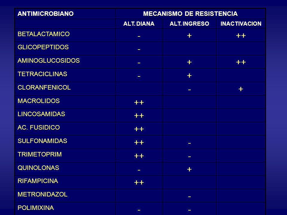 ANTIMICROBIANO MECANISMO DE RESISTENCIA ALT. DIANA ALT. INGRESO INACTIVACION BETALACTAMICO-+++ GLICOPEPTIDOS- AMINOGLUCOSIDOS-+++ TETRACICLINAS-+ CLOR