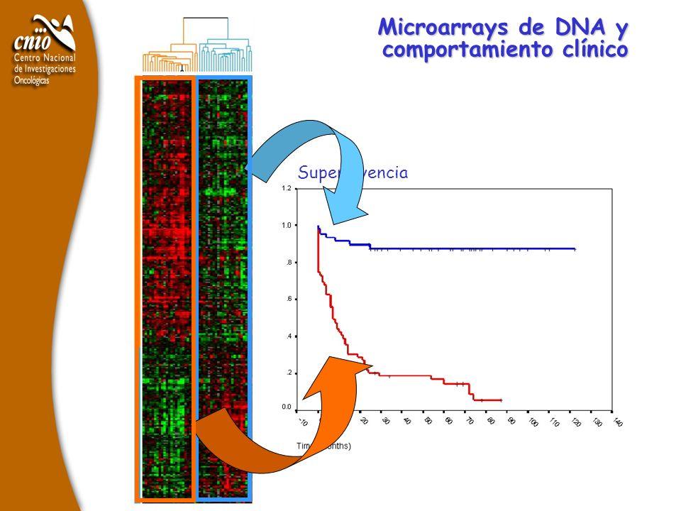 Supervivencia Microarrays de DNA y comportamiento clínico