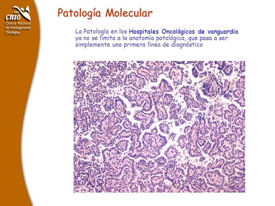 Patología Molecular La Patología en los Hospitales Oncológicos de vanguardia ya no se limita a la anatomía patológica, que pasa a ser simplemente una