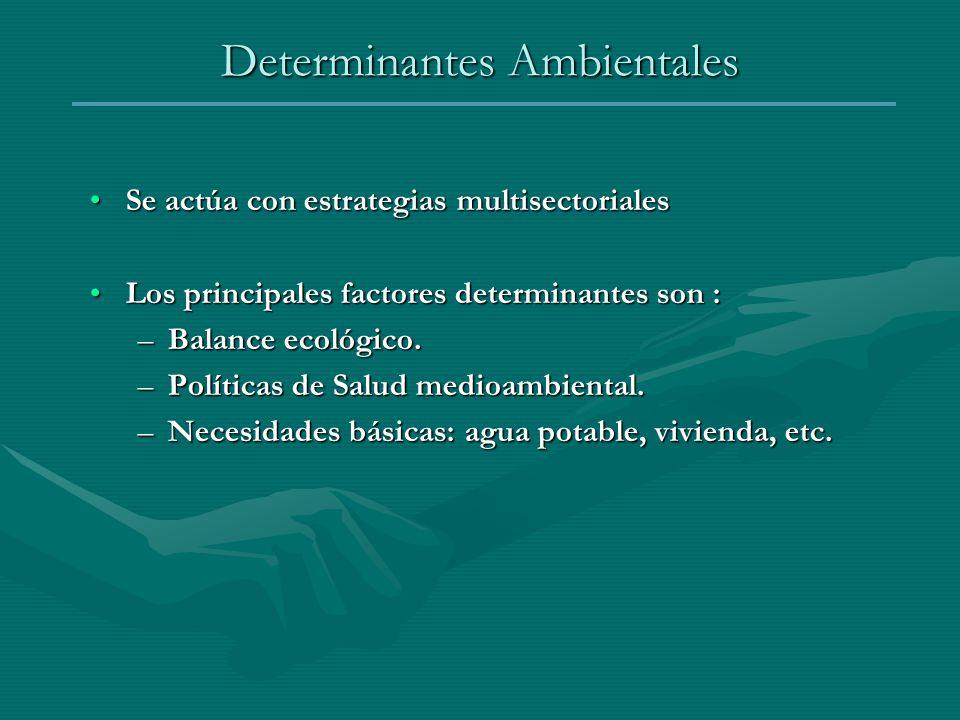 Determinantes Ambientales Se actúa con estrategias multisectorialesSe actúa con estrategias multisectoriales Los principales factores determinantes so