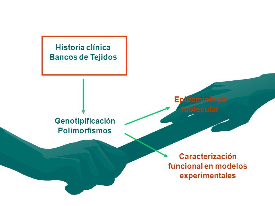 Historia clínica Bancos de Tejidos Genotipificación Polimorfismos Epidemiología molecular Caracterización funcional en modelos experimentales
