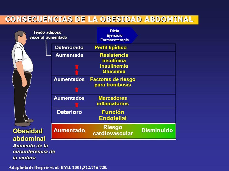 Adaptado de Després et al. BMJ. 2001;322:716-720. Dieta Ejercicio Farmacoterapia Obesidadabdominal Aumento de la circunferencia de la cintura Tejido a
