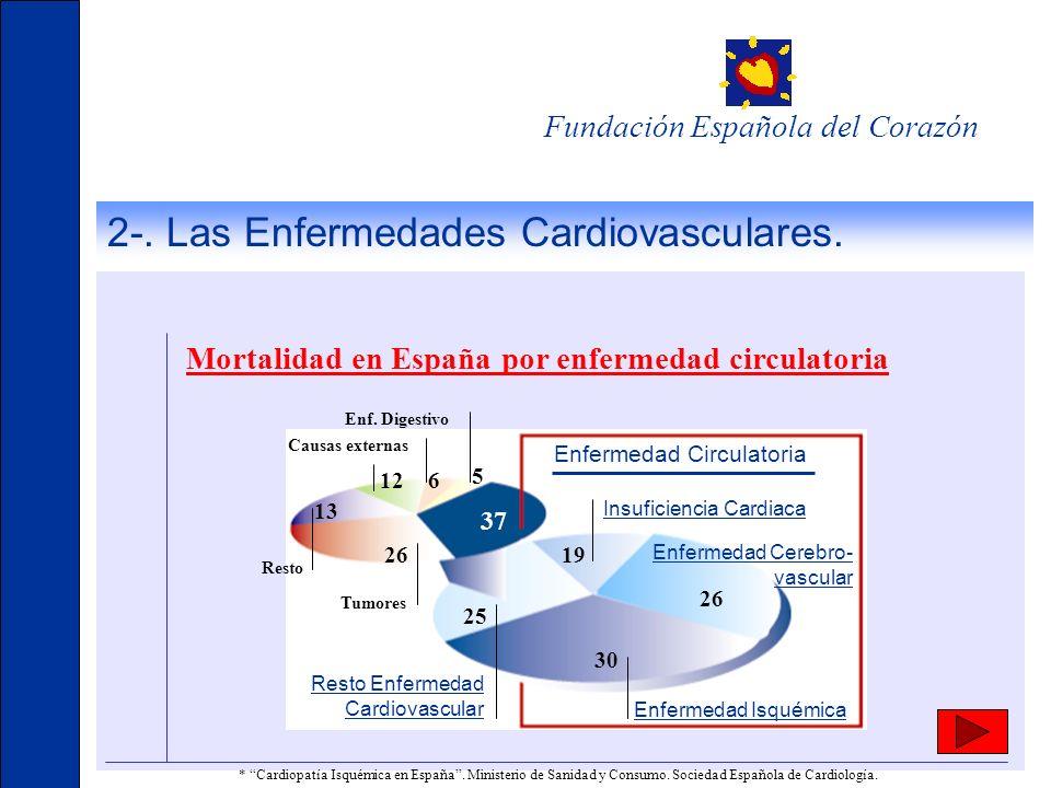 2-. Las Enfermedades Cardiovasculares. Fundación Española del Corazón 5 612 13 26 37 19 25 26 30 Tumores Enf. Digestivo Enfermedad Circulatoria Resto