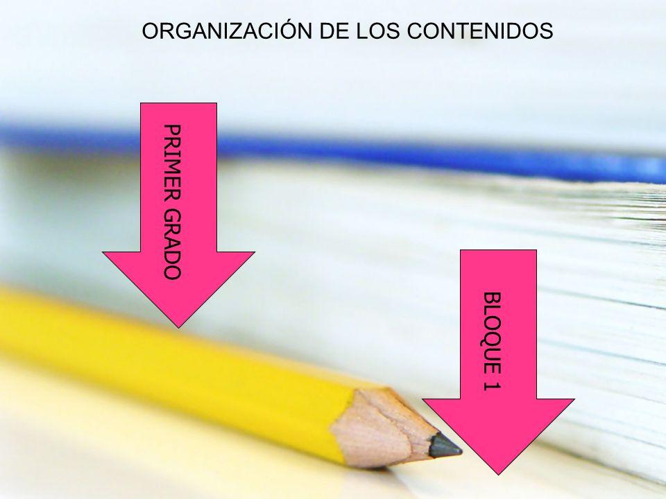 PRIMER GRADO BLOQUE 1 ORGANIZACIÓN DE LOS CONTENIDOS