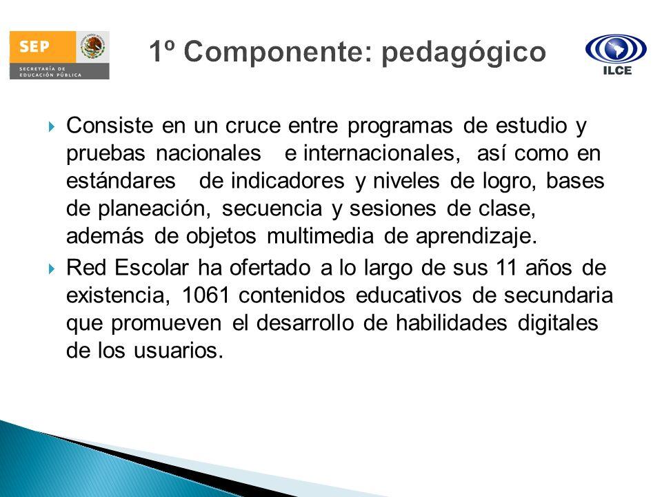 Consiste en un cruce entre programas de estudio y pruebas nacionales e internacionales, así como en estándares de indicadores y niveles de logro, base