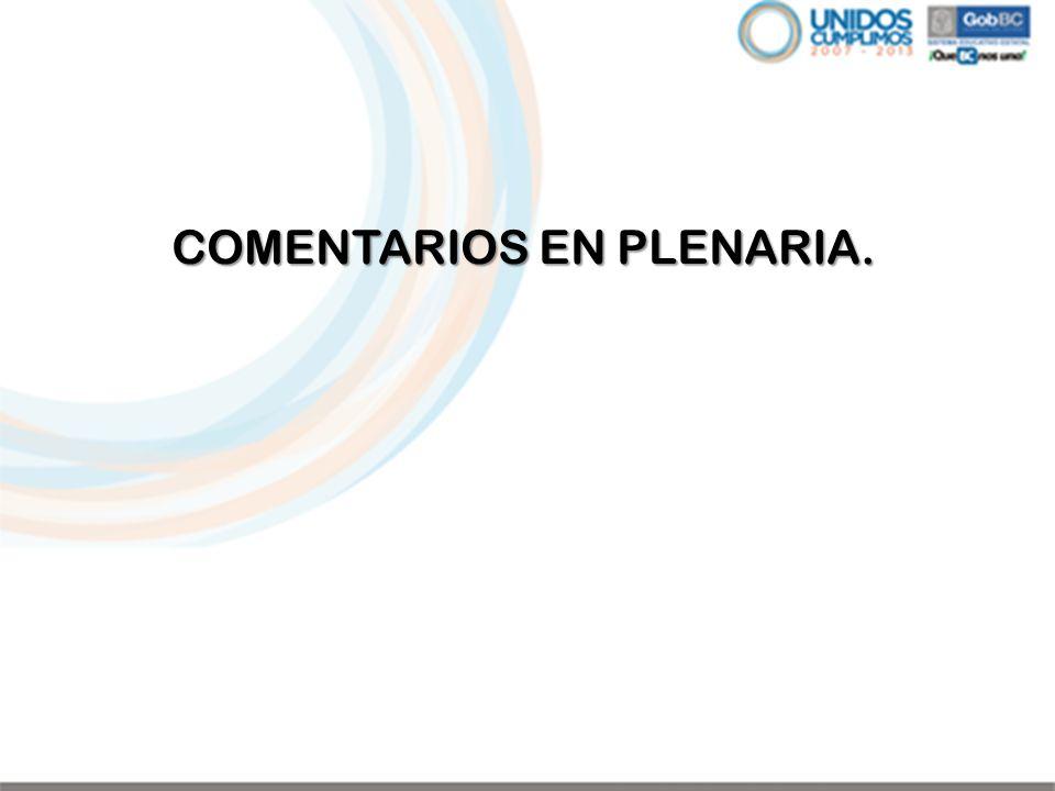 COMENTARIOS EN PLENARIA.