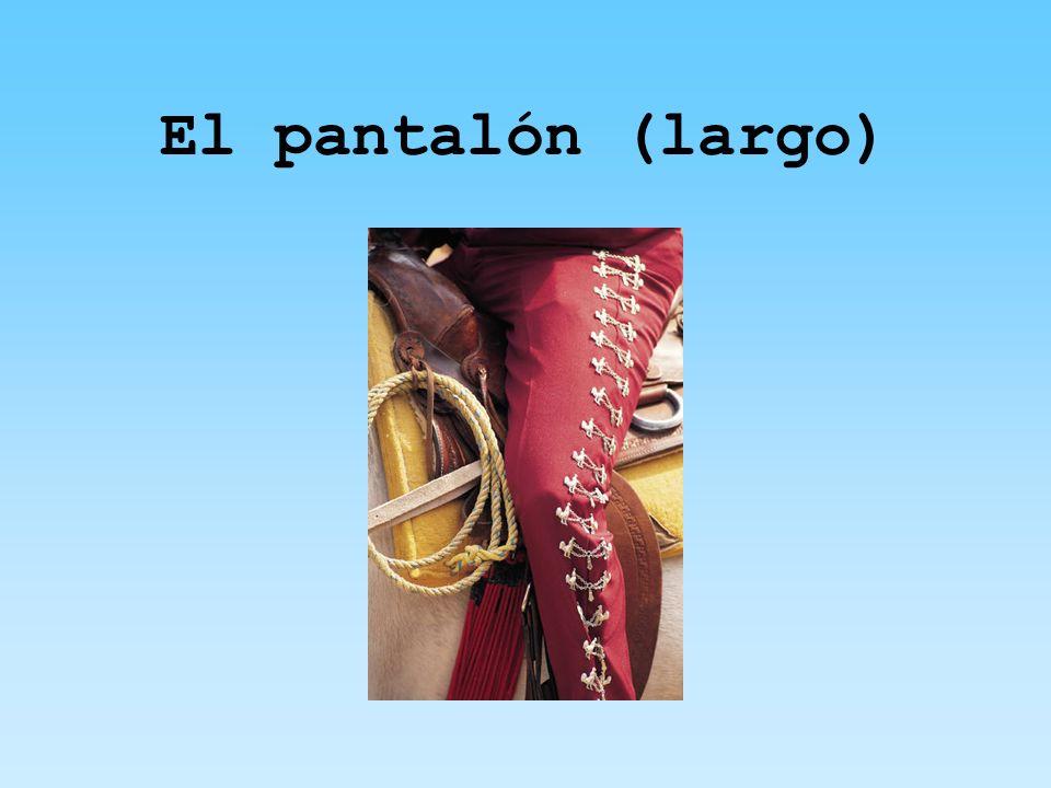 El pantalón (largo)
