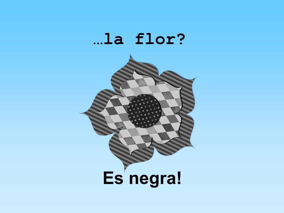 …la flor Es negra!